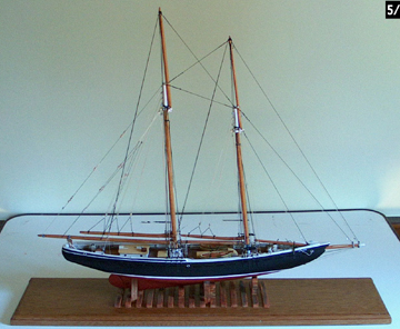 anotherbluenose